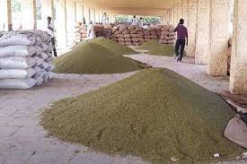 Procurement of crops on support price will start in Rajasthan from 20 october